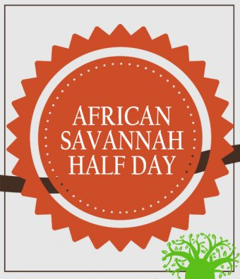 african-savannah-half-day